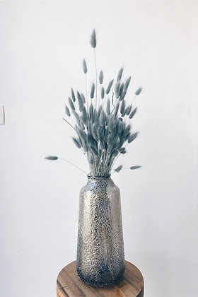 Vaas (excl. lagurus)