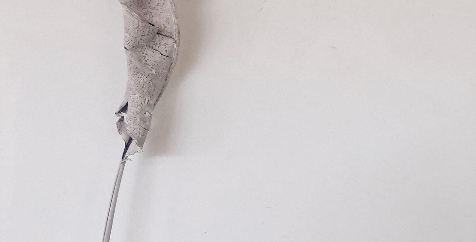Strelitzia blad, white wash