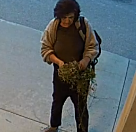 RCMP -Can you identify this person?