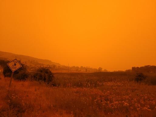 Vernon's Smoky Orange Sky...