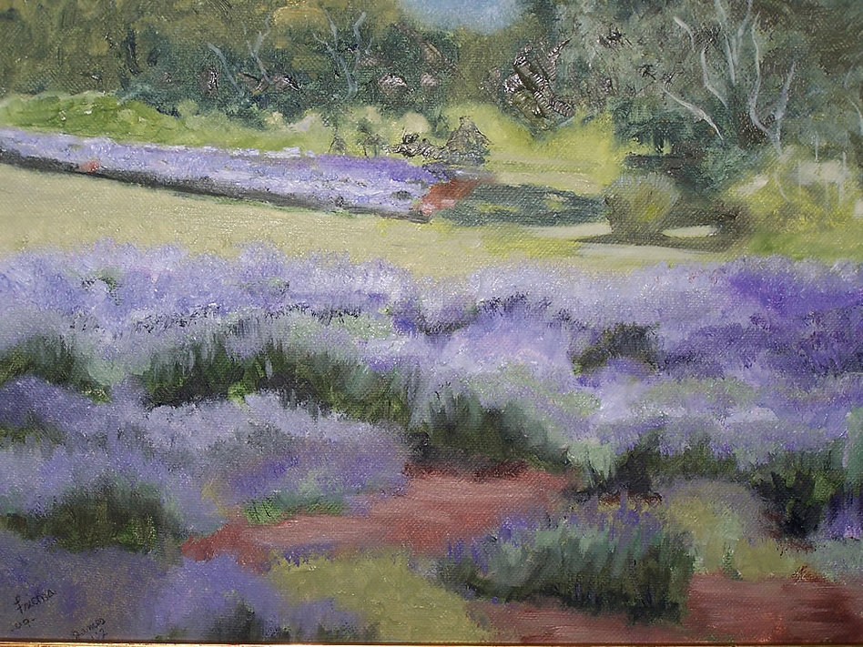 lavendar-field_oil_rs.jpg