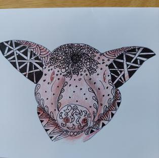 Zentangled pig