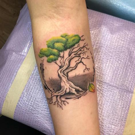Half Alive Tree