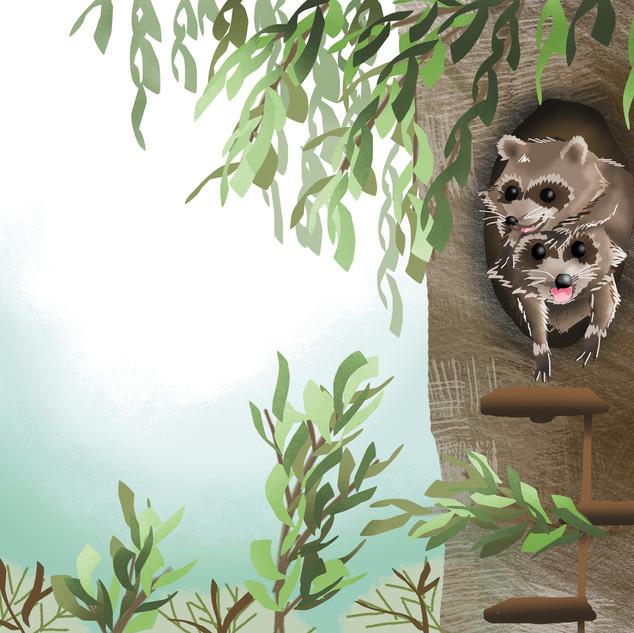 9.Höhle, Waschbären.jpg