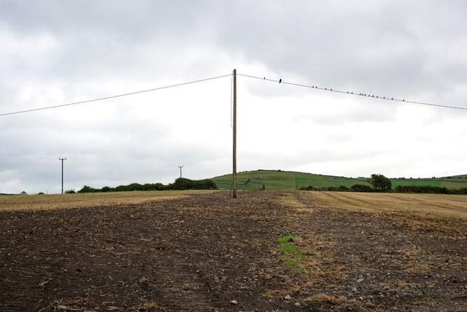 Landscape as Witness - Field Trip: Day 14