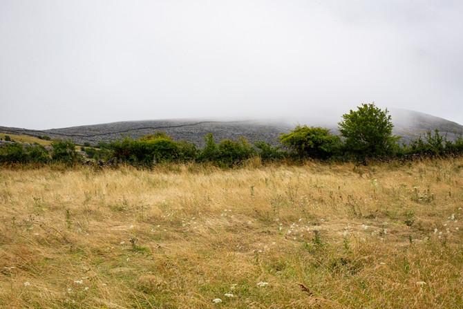 Landscape as Witness - Field Trip: Day 8