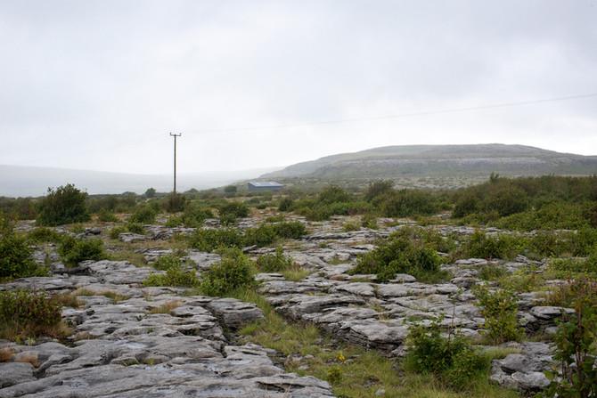 Landscape as Witness - Field Trip: Day 13