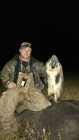 Varmint hunting california, guided varmint hunts