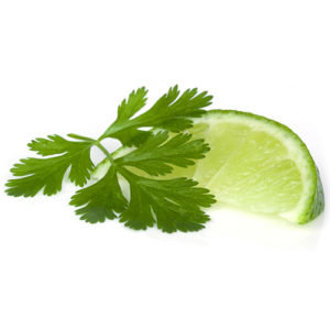 Cilantro Lime Infused Olive Oil