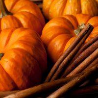 Pumpkin Spice Dark Balsamic Vinegar