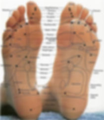 reflexology foot map showing reflexive points in the feet.  reflexology in seattle the best foot massage