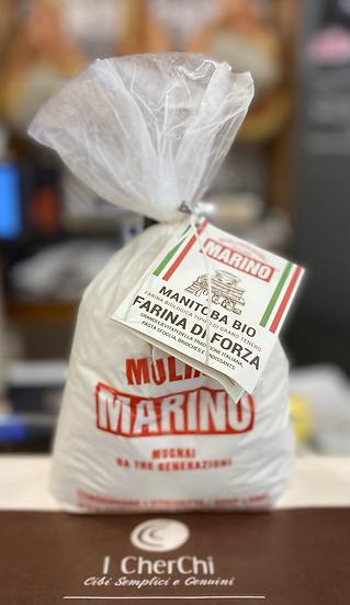 Manitoba Bio, Mulino Marino
