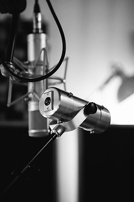 Rhythm Ace Studio C12 Copperphone BW.jpg