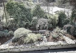 small yard before 1_edited_edited