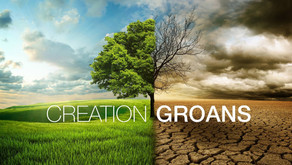 """""""Creation Groans"""" (Live Stream Service Only Sun.14 Feb)"""