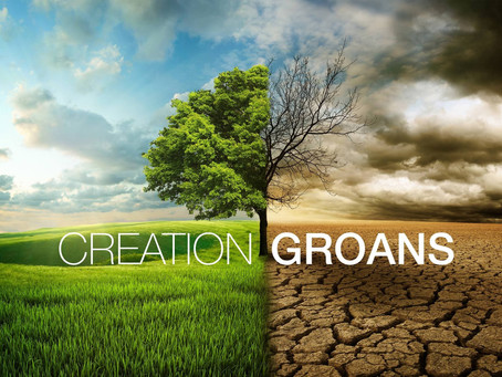 """Creation Groans"" (Live Stream Service Only Sun.14 Feb)"