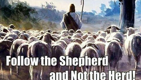 """""""Follow the Word – Not the Herd"""""""