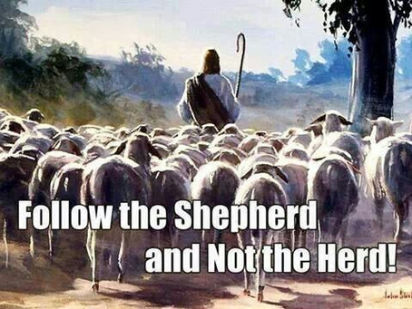"""Follow the Word – Not the Herd"""
