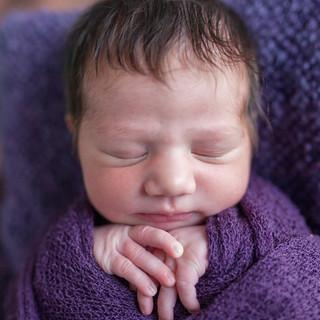 newborn wrapped posed portrait on location natural light purple