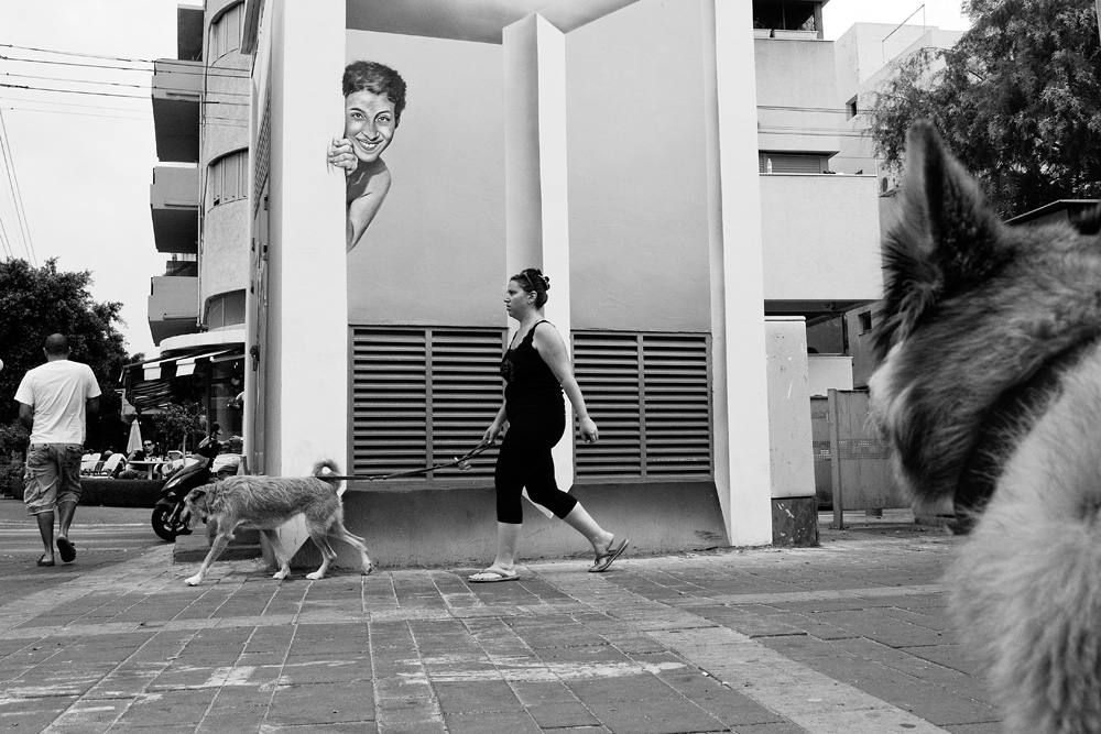 dogs_018.jpg