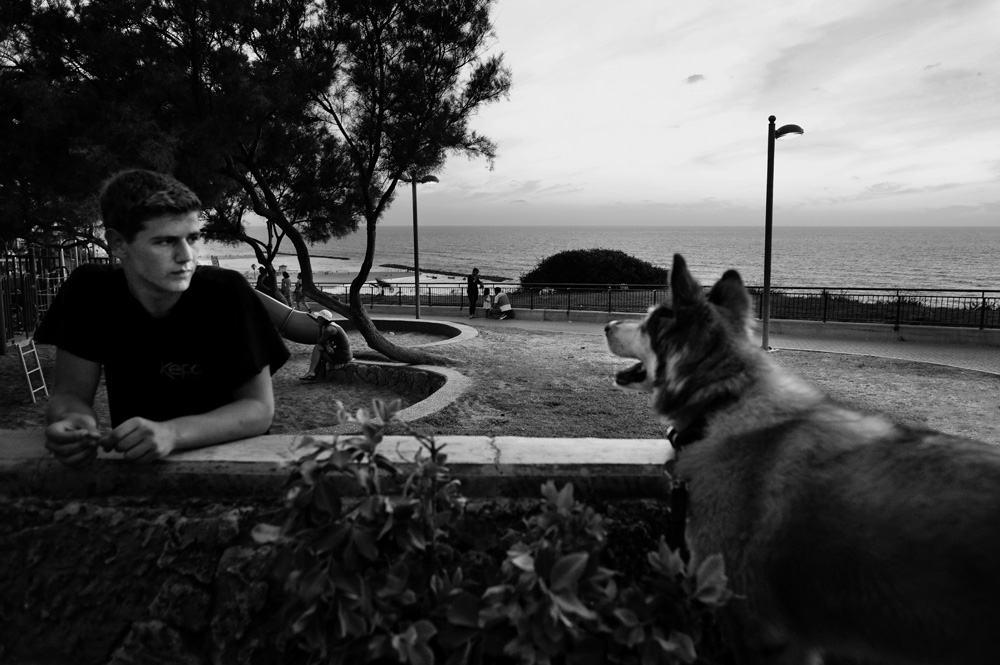 dogs_014.jpg