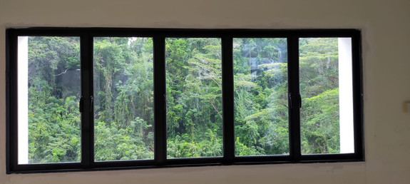 Black Anodized Casement Window
