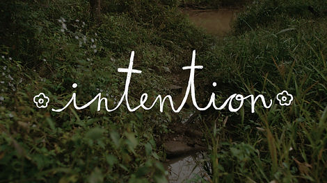 Intention graphic 02.jpg