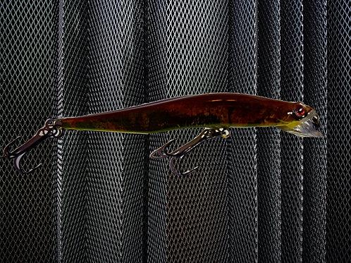 Brown Salamander