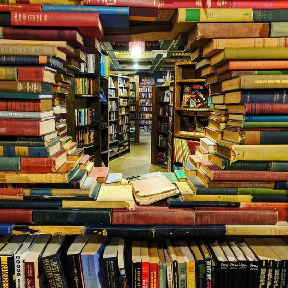 The 15 Best Independent Bookstores in the US