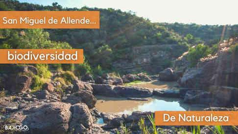 Natural Wonders of San Miguel