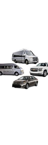 BajioGo Fleet