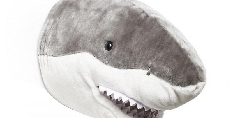 Requin Jack