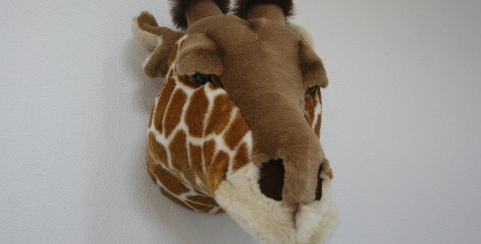 Girafe Ruby
