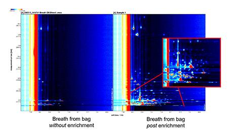 Thermo Desorber Application Gas Chromatogram