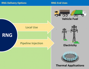 Infographic showing EPA LMOP Diagrams of RNG Sources, Gas Treatment, and End Uses