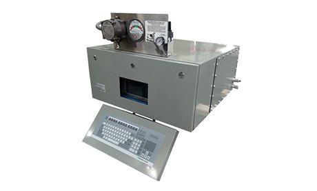 AMNG Continuous Mercury Monitor for Natural Gas Purged Enclosure