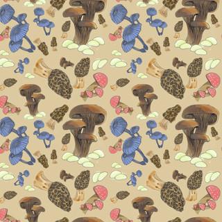 mushroompatternfinal.jpg