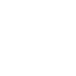 A lamp icon