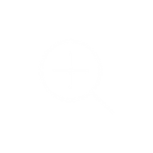 An icon of a magnifying glass enclosing a plus sign.