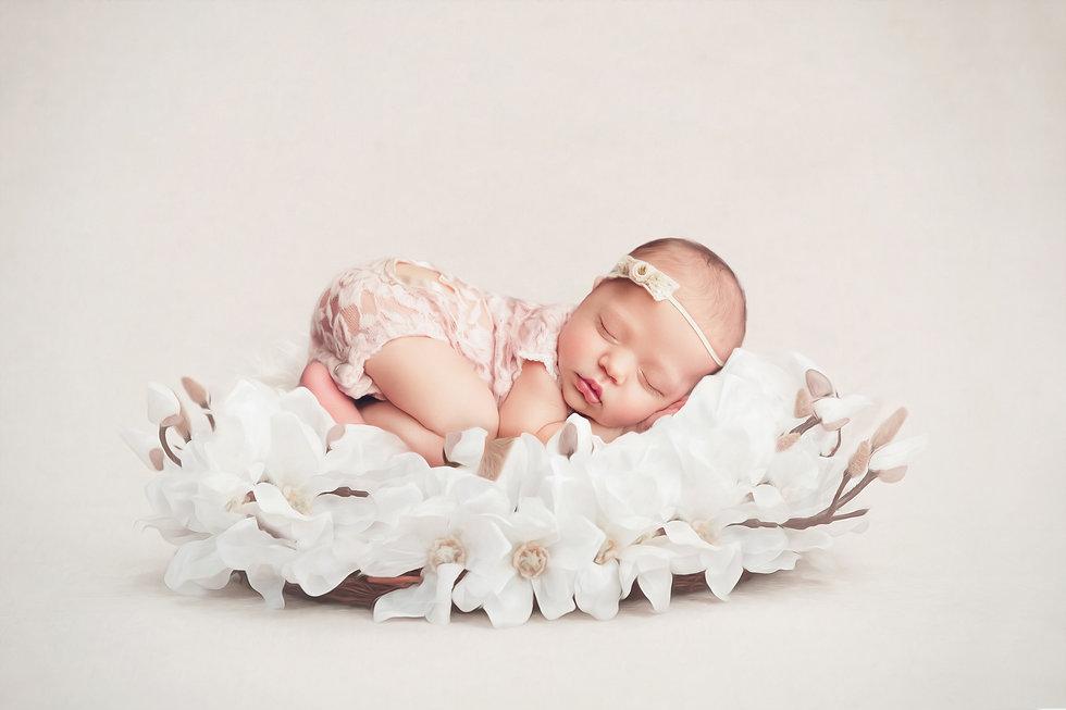 newborn photographer tawa wellington