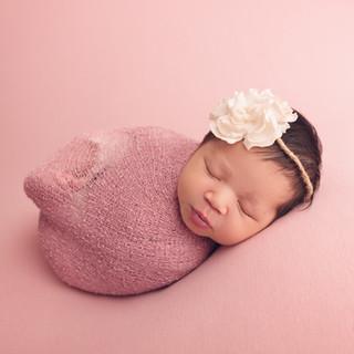 newborn photography tawa, wellington