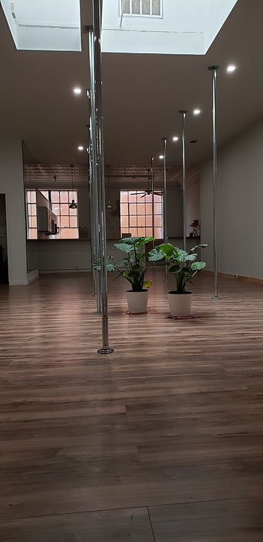 Deep Ellum Pole Dancing Classes