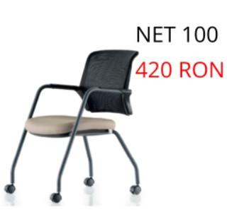 Net 100.jpg