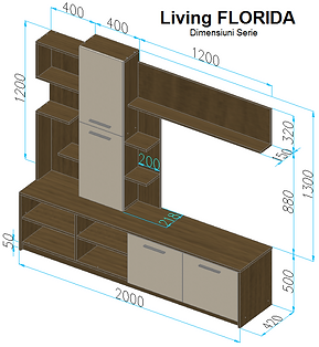 Living Florida STAS (Color) - cotata.png