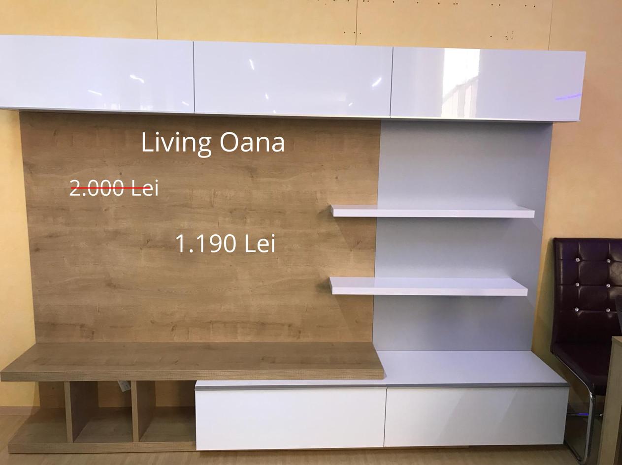 Living Oana.jpg