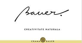 crama-bauer-508x270.jpg
