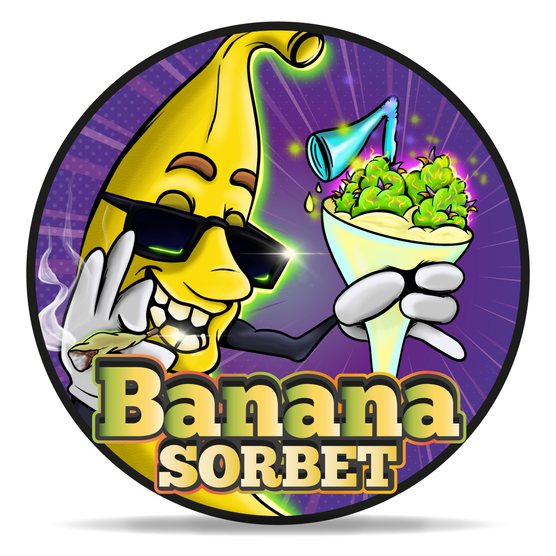 banana sorbet_INSTAGRAM_Tavola disegno 1