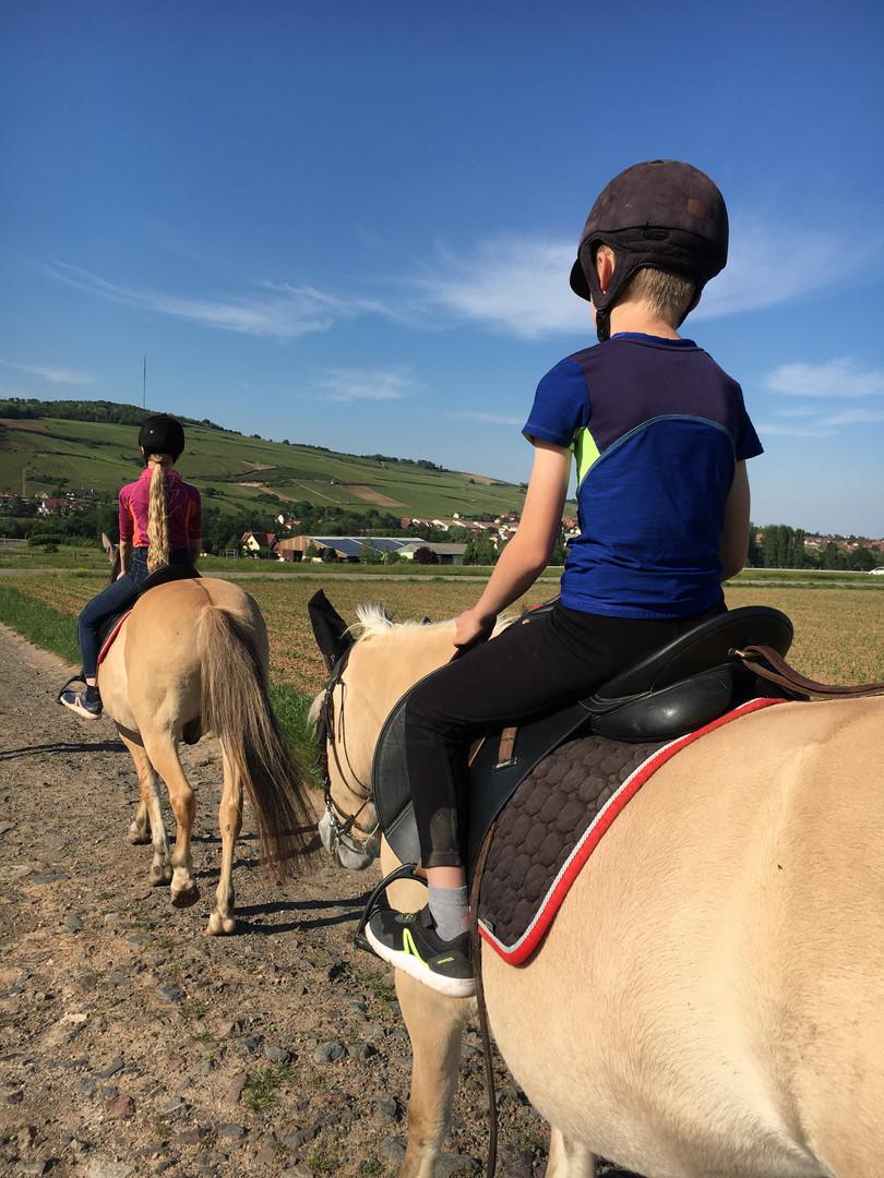 Generation-cheval_randonnee_equestre.jpg