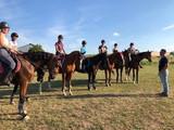 Generation-cheval_gr1.jpg