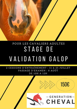 STAGE GALOP ADULTES